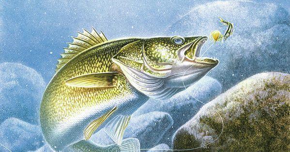 Lindy Walleye Fish