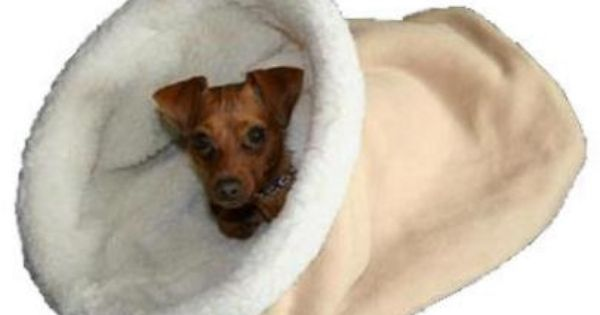 Burrow Beds Cave Dog Beds Cave Dog Bed Cozy Cave Dog Bed Cozy Dog