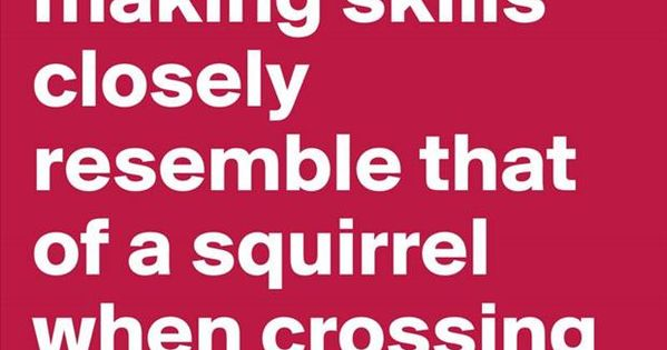 My decision making skills closely resemble to that of a squirrel while