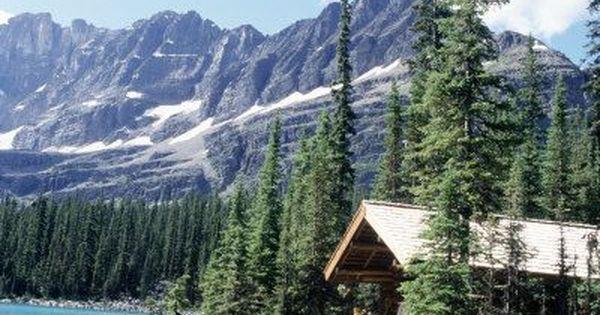 Cabin In The Woods By Lake Cabin Near Lake O 39 Hara Banff