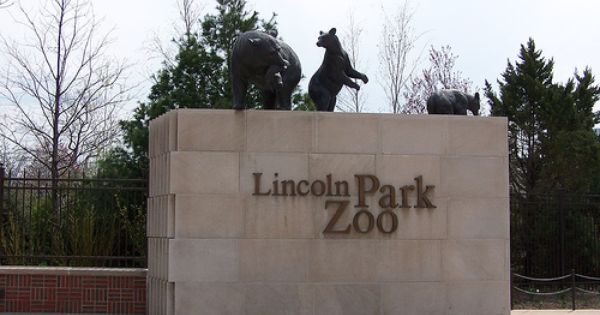 Lincoln Park Zoo Chicago Illinois Lincoln Park Zoo Chicago Lincoln Park Zoo Lincoln Park