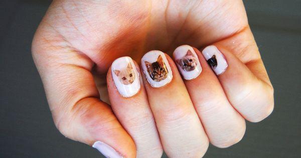 #catnails