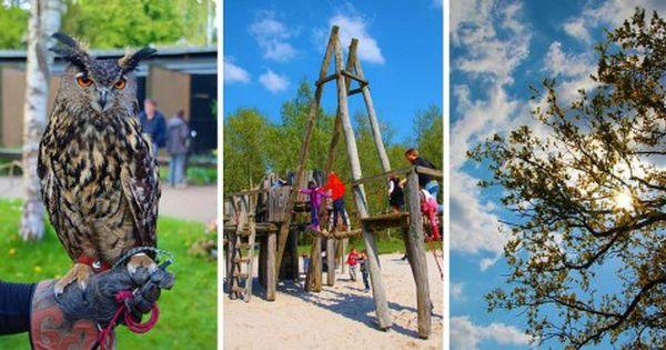 Unbeauftragte Werbung Gut Leidenhausen Mitten In Der Wahner Heide Im Konigsforst Ausflug Tagesausflug Ausfluge Mit Kindern