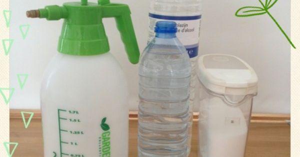 Mauvaises herbes pulv risateur 2 l 1 l eau ti de 1 2 for Desherbant sel eau vinaigre