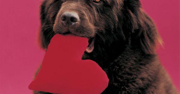 valentine's day etiquette friends