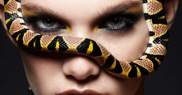 Snakes Fashion World Coloring With Different Color