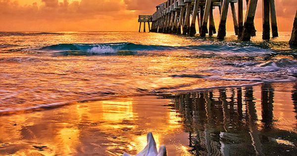 Golden Caramel Sunrise over Juno Beach Pier, Florida.I want to go see