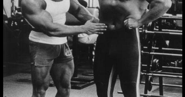 Arnold Schwarzenegger - Muscle gallery | arnie | Pinterest