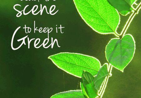going-green-slogan | Go Green | Pinterest | Carte da ...