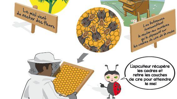 une ruche comment a marche des cultures pour les. Black Bedroom Furniture Sets. Home Design Ideas