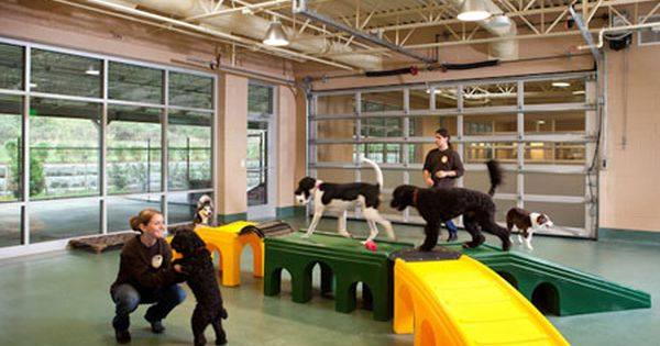 Dog Daycare Building Plan There Are Real Economic Returns In Building A Doggy Day Care Center Dog Boarding Facility Dog Daycare Indoor Dog Park