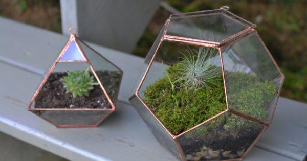 dreamy little garden