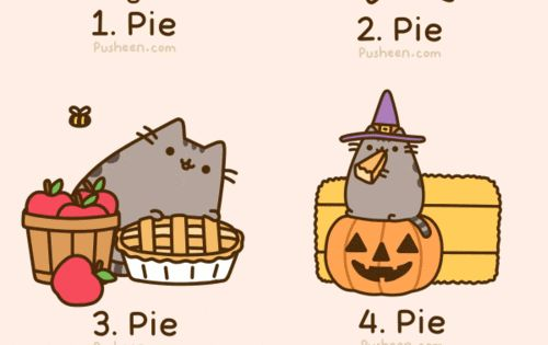 Reasons I Love Fall. and fat cats.