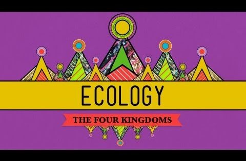 ib biology ecology coursework Resources for teaching and revision of international baccalaureate biology core topics.
