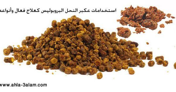 عكبر النحل البروبوليس استخدامات كعلاج فعال وأنواعه Food Animals Dog Food Recipes Food