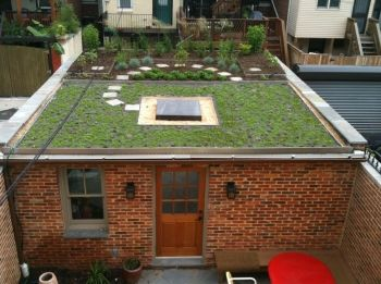 Flat Roof Additions With Deck On Top Google Search Green Roof Residential Modern Roofing Fibreglass Roof