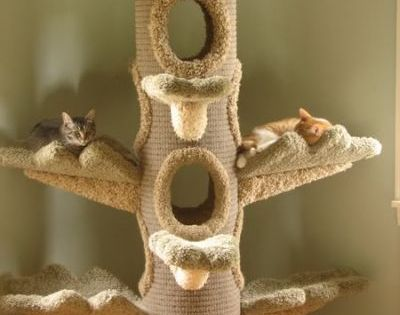 This tree is Amazing!! Need more pet-friendly decorating ideas? We can help