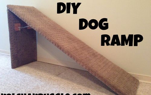 Diy Dog Ramp For Special Need Dogs Http