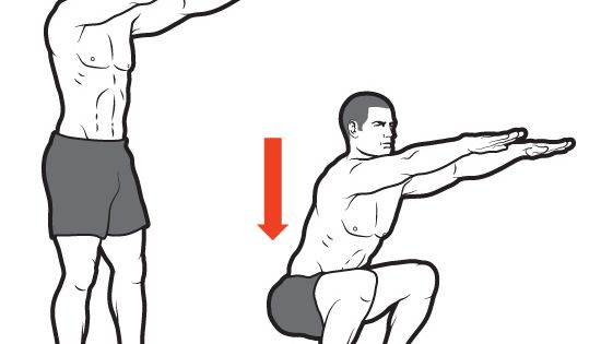 16   body weight squats