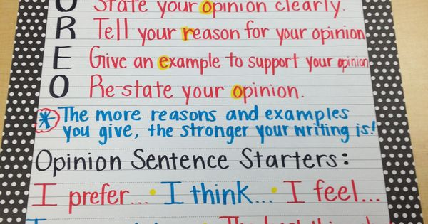 opinions essay