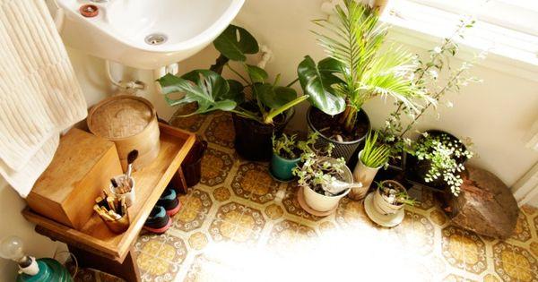 bathroom full of plants