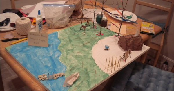 Indian Village School Project