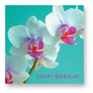 Happy Birthday Orchid Flower Images 1 With Images Orchid