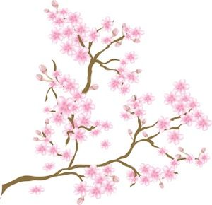Tudor Nights Hanami The Art Of The Cherry Blossom Gregslistdc Cherry Blossom Clip Art Flower Clipart Images Cherry Blossom Pictures