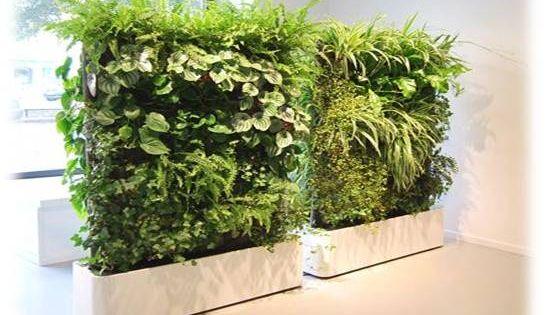 Jardineras de fibra de vidrio con pared verde de plantas for Plantas artificiales para interiores