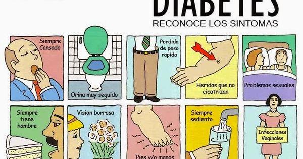 Como Se Puede Prevenir La Diabetes: 12 verdades sobre la