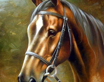 صور خيول وكانها في لوحات حقيقية Horses Horse Painting Horse Drawings