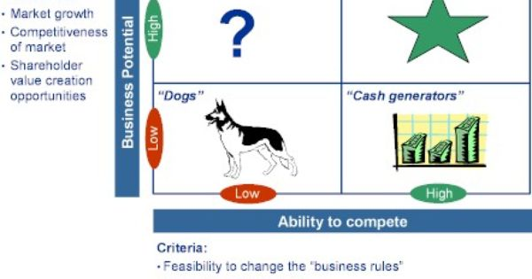 Caneval Venturing Business Rules Marketing Analysis Business Strategy