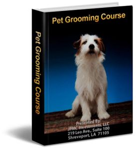 A Cheap And Great Online Pet Grooming Course Dog Grooming Pet