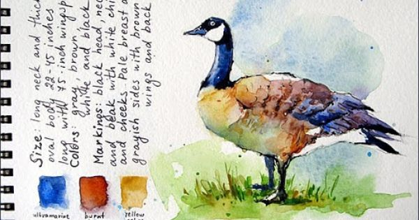 Sketching In The Park Watercolor Sketchbook Watercolor Palette