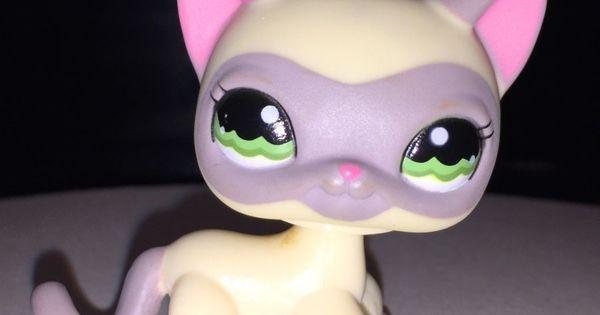 Lps Cat 1116 Cream Siamese Kitty W Mauve Mask Green Eyes Littlest Pet Sho Little Pets Lps Cats Littlest Pet Shop