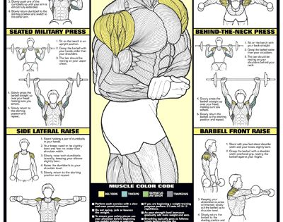 shoulder workout wall chart professional strength training