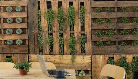un mur v g tal fait maison et moindre frais en palettes. Black Bedroom Furniture Sets. Home Design Ideas