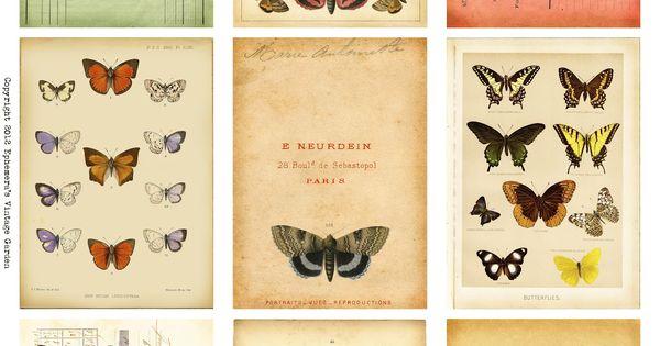 Free Printable: Butterfly Ephemera ATC's from Ephemera's Vintage Garden.