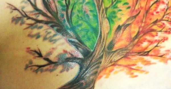 tattoo joes in vacaville ca a tree with all the seasons. Black Bedroom Furniture Sets. Home Design Ideas