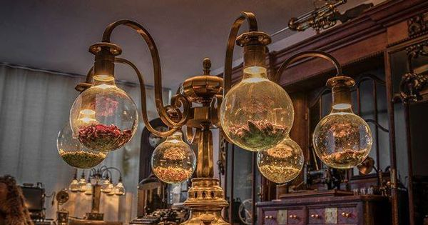 Steampunk decor cabinet of curiosities pinterest plafondlampen werkplaats en coraline - Geheime deco ...