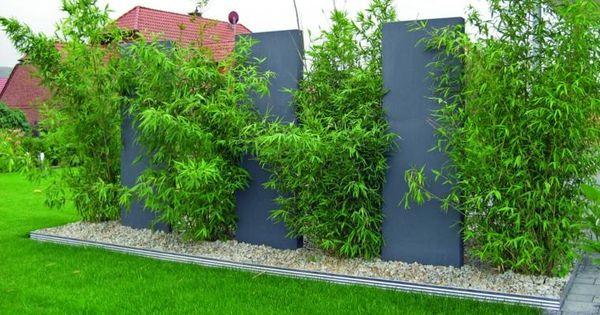 Cl tures de jardin en 59 id es captivantes gardens for Brise vue jardin brico depot