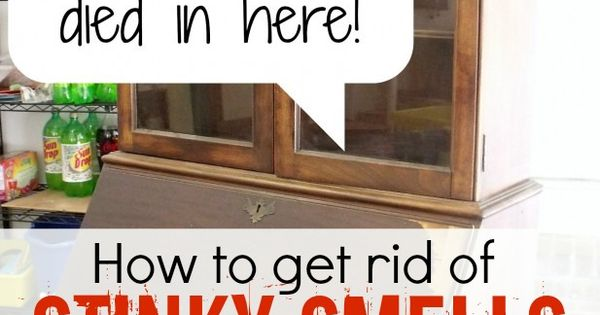 How To Get Gross Smells Out Of Old Furniture Pinterest