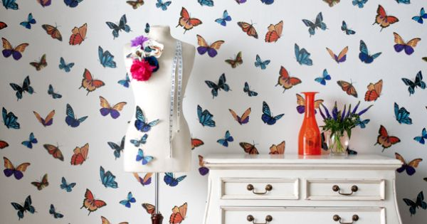 fun wall paper for a accent wall
