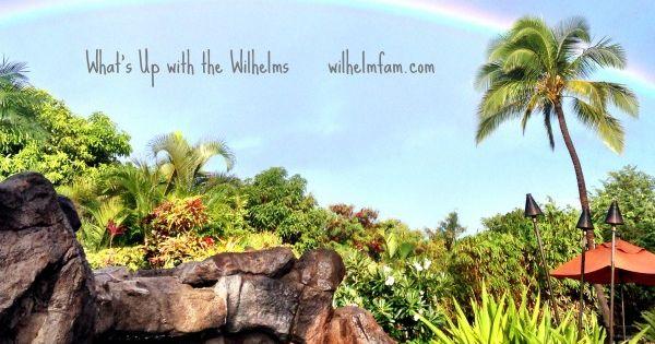 Best Things to Do on Kauai Hawaii | Hawaii Travel