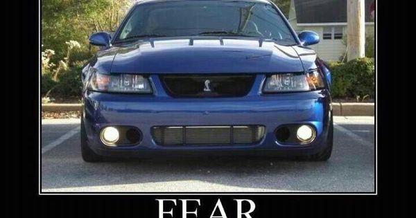 Mustang Terminator | Mustang Only | Pinterest | Haha, Love ...