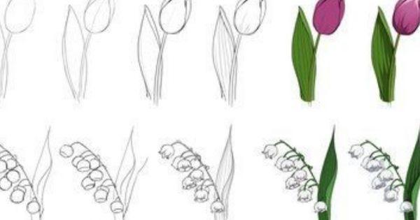 3 Cara Mudah Menggambar Sketsa Bunga Yang Indah Di 2020 Gambar Bunga Cara Menggambar