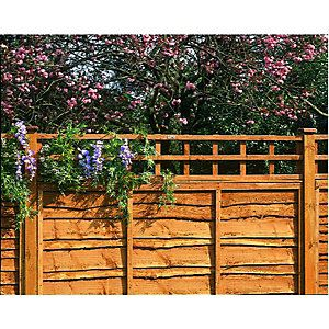 Wickes Fence Top Trellis Diamond Lattice Autumn Gold 1 83m X 300mm Lattice Fence Panels Lattice Fence