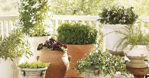Tuscan Patio Pottery Designs Planters Flower Pots