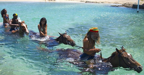 100 Things to Do Before You Die: You will never need to read another bucket list again. Braco Stables in Jamaica