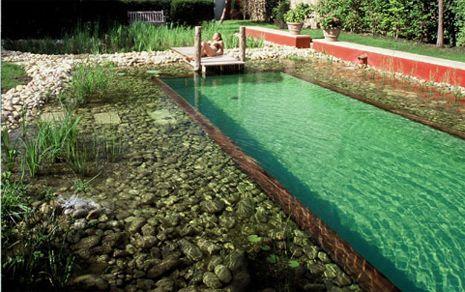 Natural Lap Pools Natural Swimming Pool Lap Pool Draußen Nur Kännchen Natural Pool Natural Swimming Pools Natural Swimming Ponds